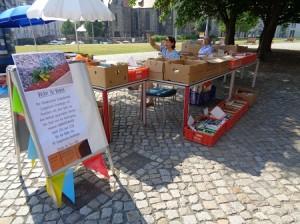DSC01543-300x224 in Bücherflohmarkt 2015 - Trotz grosser Hitze 359 € für weitere Namenstafeln